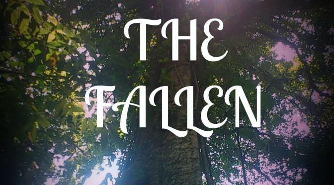 Fantasy Book Promo – The Fallen