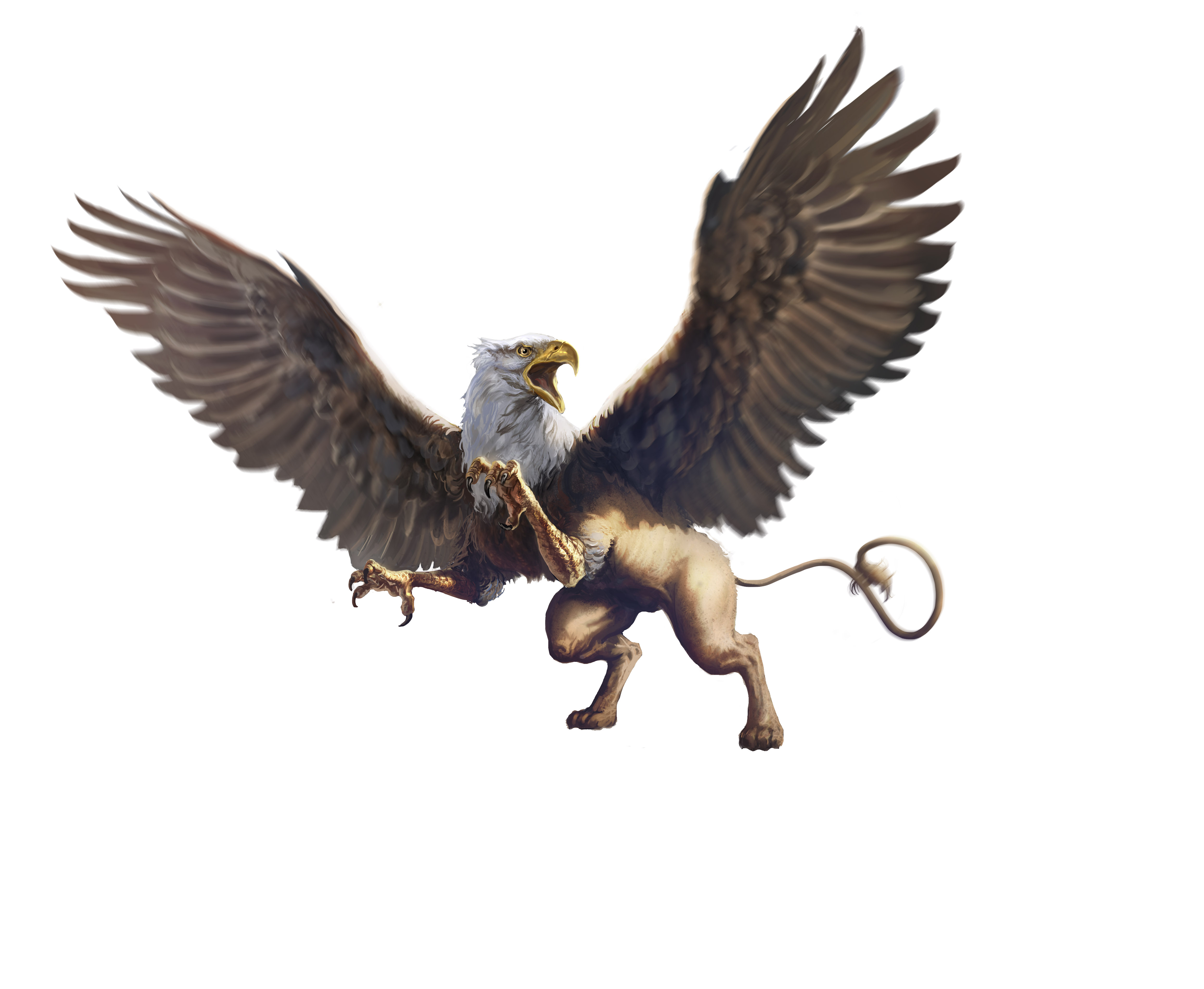 Concept art griffin for The griffin