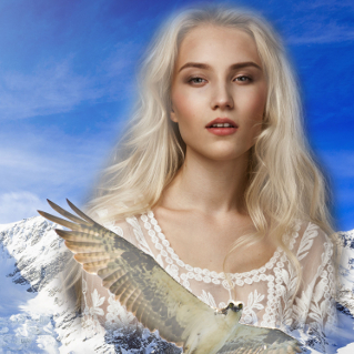 Sirenhawk Book 1: Misborn of the Snowy Reaches, by L.E. Parr
